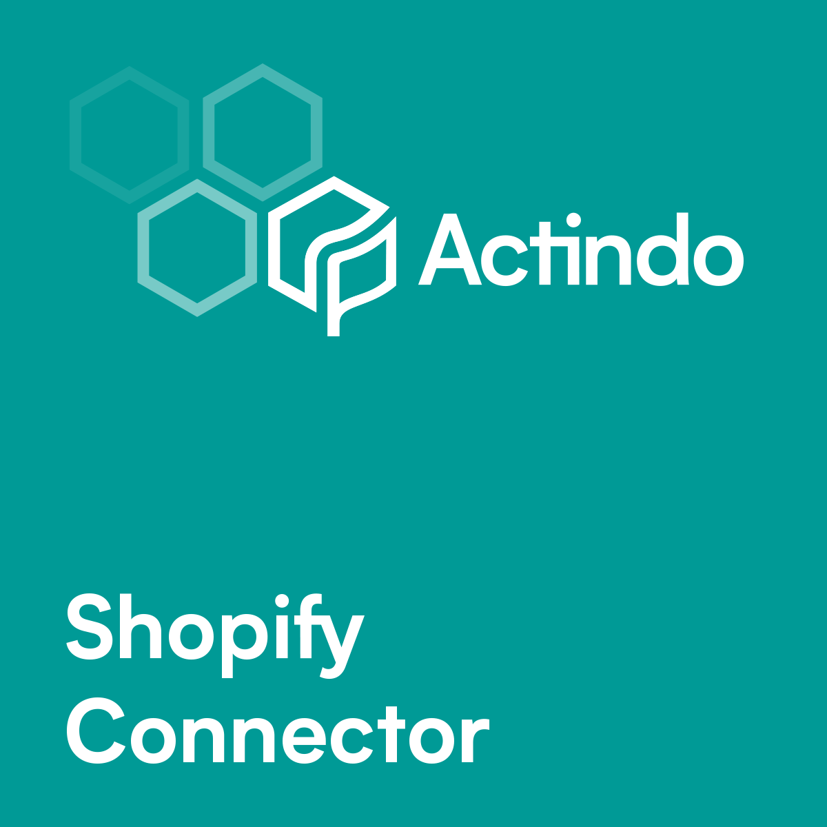 Shopify Omnichannel app by Actindo ag
