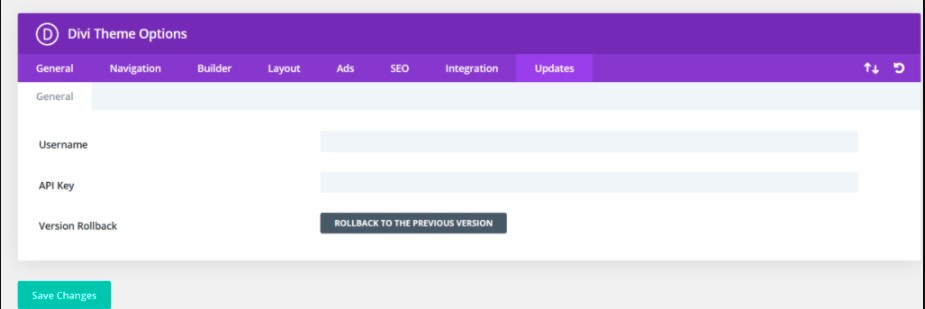automatic updates from the Divi theme