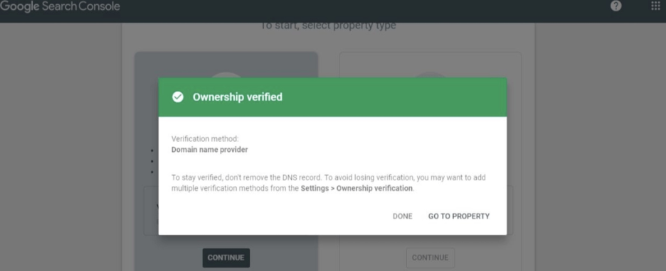 """Return to Google Search Console and click """"Verify"""""""