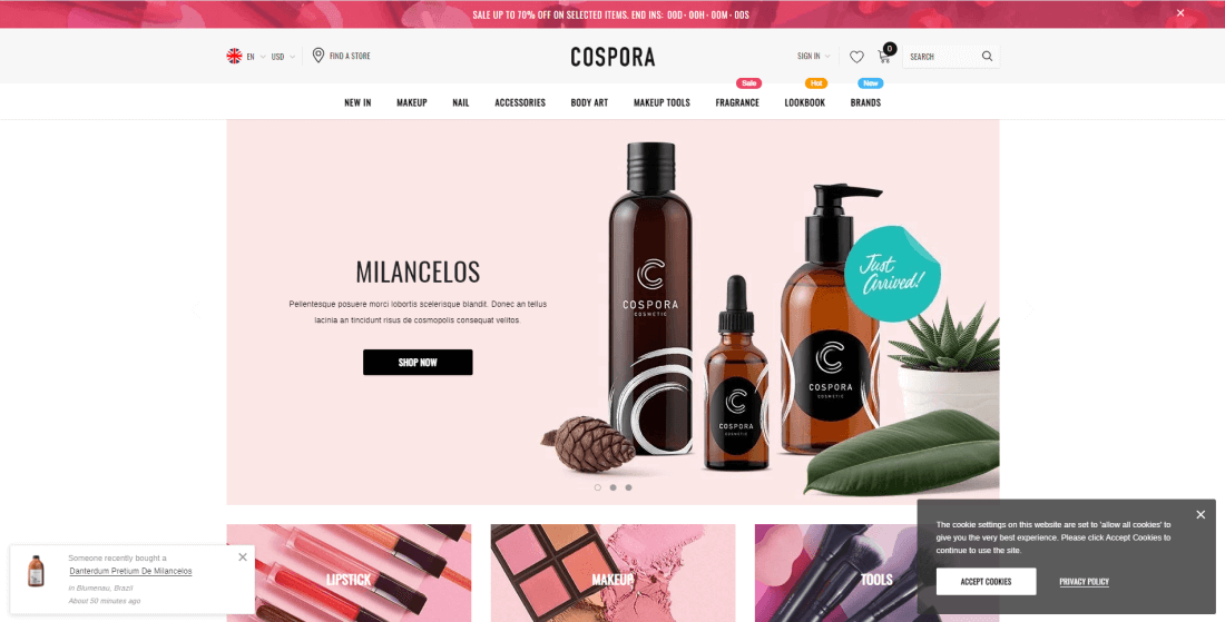 Shopify Skin & Skincare store Themes